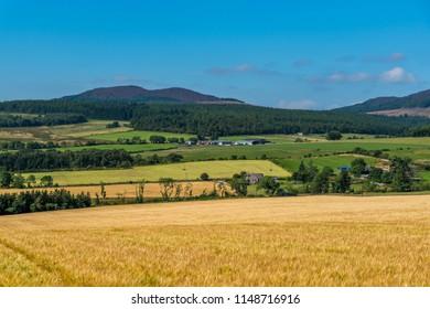 Millstone Hill, Aberdeenshire, Scotland, United Kingdom,April 17th 2017. Farmland with the hil Millstone Hill in the background.