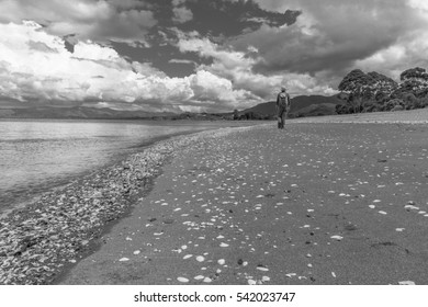 Milnthorpe Park Beach with Person B/W