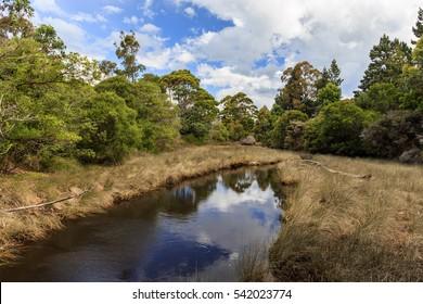 Milnthorpe Park Lake