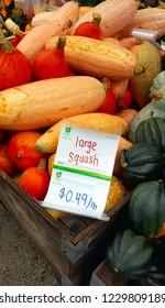 MILTON, CANADA - OCTOBER 8, 2018: Squash for sale at a farmer's market in Milton, Ontario.