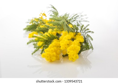 Mimosa flower bunch on a table with reflection