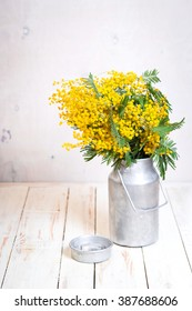 Mimosa flowers in a vintage metal milk can on the rustic white wooden background. Shabby chic style decoration with flowers. Selective focus
