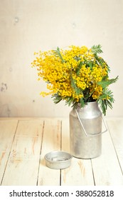 Mimosa flowers in a vintage metal milk can on the rustic white wooden background. Shabby chic style decoration with flowers. Selective focus. Vintage retro toned