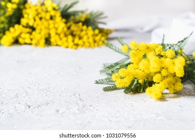 mimosa in the foreground and blurred in the background