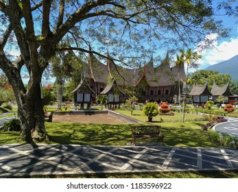 minang house and the tree