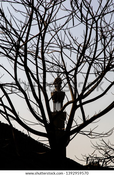 Minaret of the famous and historic Ibn Tulun mosque seen through tree; Abstract picture of mosque