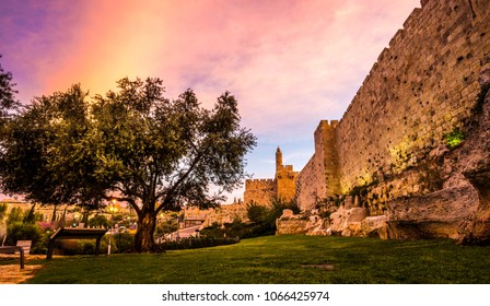 The minaret of the Tower of David/Jerusalem Citadel museum, located next to Jaffa Gate and the Ottoman-built Old City Wall with remains from earlier periods, with beautiful color clouds and olive tree