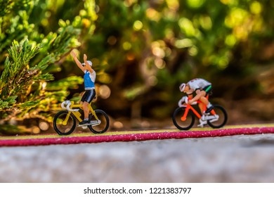 minature race in the forest