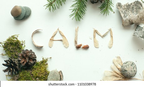 mindfulness calmness unplug concept, word calm from forest natural material