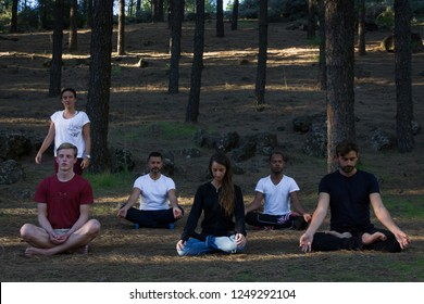 Mindfulness teacher guiding multi ethnic group of students in pine trees forest park. Female instructor leading meditation class in nature. Young people sitting on lotus pose in outdoor class