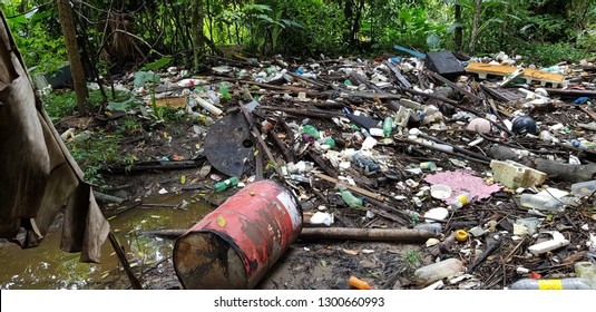 Mindu Municipal Park, Manaus - Amazon, Brazil January 31, 2019. Catastrophic environmental sins in the Mindu River and also in the park. When do the responsible persons react?