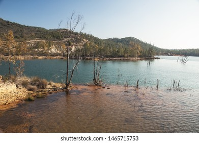 Mineral washing reservoir in copper mine with shrub remains and trees killed by toxins in copper mine with shrub remains and trees killed by toxins