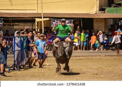 Minglanilla, Cebu, Philippines - April 21, 2019: Sugat Kabanhawan Festival 2019 Carabao Race.