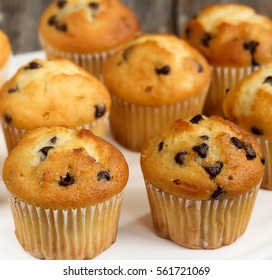Mini Chocolate chip muffins, selective focus