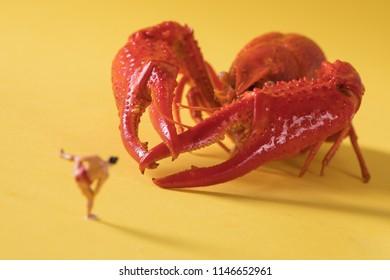 Mini Crayfish Crawfish