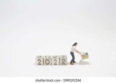 the mini figure planning 2022 shopping list