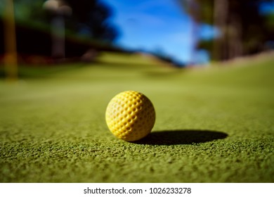Mini Golf yellow ball on green grass at sunset