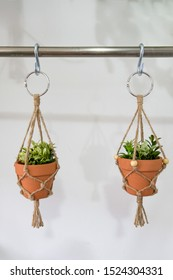 mini macrame plant hangers made out of jute twine are hanging. Fake plants are in the ceramic pots.