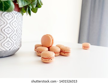 Mini pink french macarons next to flower pot.