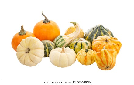 Mini Pumpkin collection Isolated on a White Background