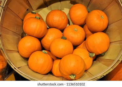 Mini pumpkins perfect for Halloween or Fall, Autumn concept.