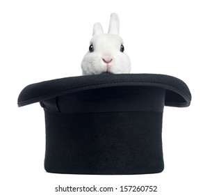Rabbit Trick Stock Photos Images Photography Shutterstock