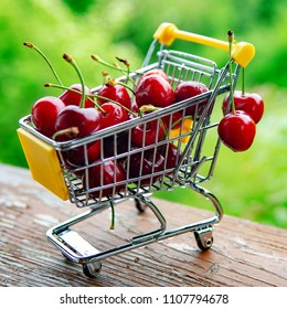 mini shoppingcart with red ripe cherries on green background