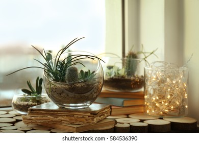 Mini succulent garden in glass terrarium on old book