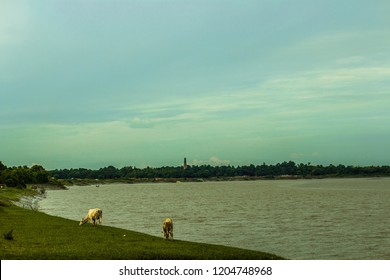 Mini Sundarban,India, Taki , Nature ,river and jungal ,Icchmoti River flowing between India and Bangladesh