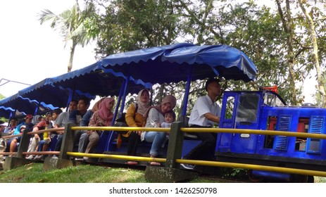 Mini trains passing along the nusantara flower garden in cisarua west java, indonesia. photo taken in june 2019