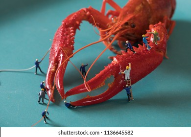 Mini villain and crayfish micro cray crayfish miniature photography crayfish