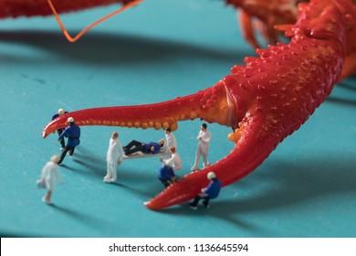 Mini villain and crayfish micro cray crayfish miniature photography crayfish