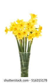 Miniature daffodil flowers in a vase isolated against white