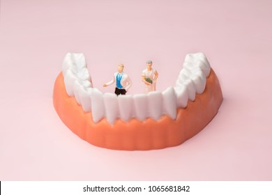 "Miniature dentist and nurse ""team specialists"" observing and discussing about human teeth with gums and enamel"