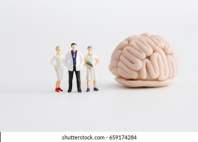 """Miniature doctor and nurse """"team specialists"""" observing and discussing about human brain, Science and Medical Concept"""