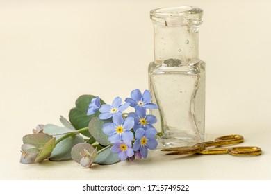 Miniature flower arranging items arranged as a 'Still Life'.