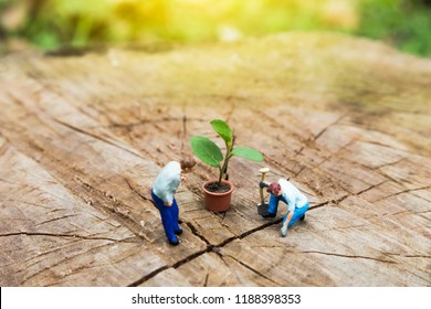 Miniature Greenhouse concept, miniature mini figures with planting tree and protect nature background. Replacement of old trees. Save the world concept.