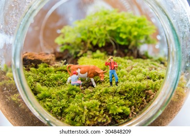 Miniature people and a cow are in the Terrarium