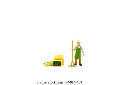 Miniature people, gardener isolated on white background, using as agriculture concept