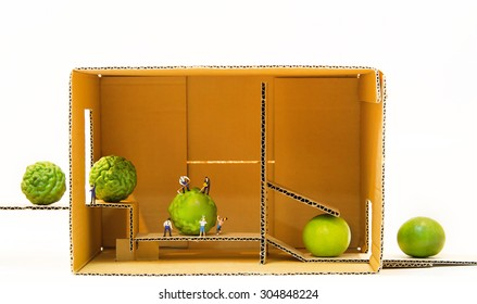 Miniature people making lime