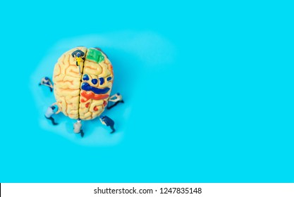 Miniature people :Miniature model with Human brain model on blue background.Concept for Brain damage,Doctors performing brain surgery.