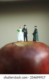 Miniature people wedding day on the apple