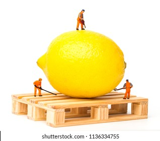 Miniature people. Miniature worker move lemon on pallet. Close-up view.