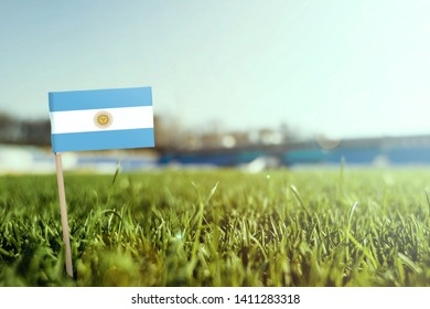 Miniature stick Argentina flag on green grass, close up sunny field. Stadium background, copy space for text.