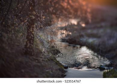 Miniature sunset magic