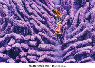 Miniature toys of photographer, a backpacker and family taking photos of purple lavender concept.