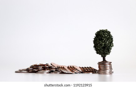 A miniature tree on the pile of coins.