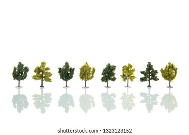 Miniature trees in row isolated over white background