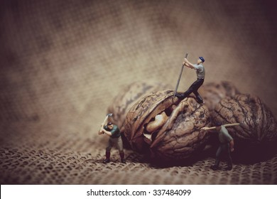 Miniature worker with a crowbar trying to open a walnut. Color tone tuned macro photo.