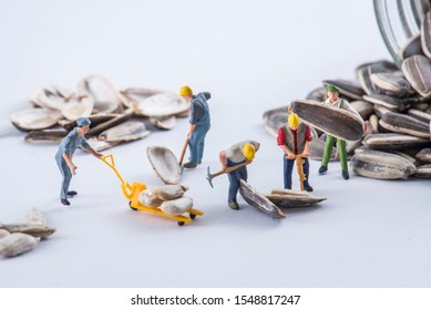 Miniature workers working with sunflower seeds
